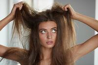 猫っ毛におすすめのシャンプー10選|軟毛向けシャンプーの選び方解説