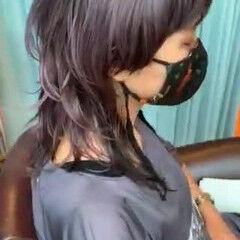 バイオレットアッシュ 大人ハイライト マッシュウルフ バイオレット ヘアスタイルや髪型の写真・画像