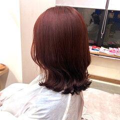 ナチュラル 鎖骨ミディアム カシスカラー ミディアム ヘアスタイルや髪型の写真・画像