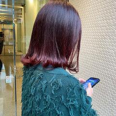 ストリート ボブ ノーブリーチ チェリーレッド ヘアスタイルや髪型の写真・画像