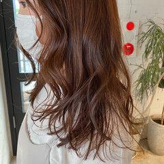 チェリーレッド レッド 透明感カラー 暖色 ヘアスタイルや髪型の写真・画像