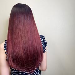 ピンクパープル カシスレッド エレガント チェリーピンク ヘアスタイルや髪型の写真・画像