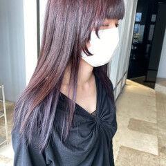 インナーカラーパープル ラベンダーグレー インナーカラー ナチュラル ヘアスタイルや髪型の写真・画像