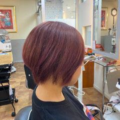 モード ピンクパープル ショート ベリーピンク ヘアスタイルや髪型の写真・画像
