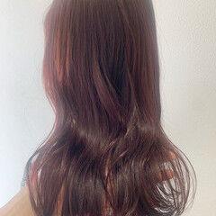 チェリーレッド カシスレッド ガーリー ロング ヘアスタイルや髪型の写真・画像
