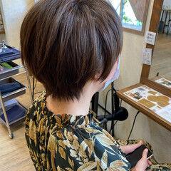 マッシュウルフ アッシュ ショートボブ ショート ヘアスタイルや髪型の写真・画像