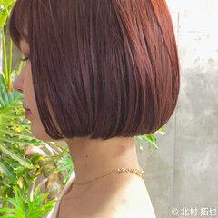 ミニボブ 透明感カラー ナチュラル カシスカラー ヘアスタイルや髪型の写真・画像