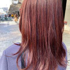 レッドカラー ナチュラル カシスレッド ブラットオレンジ ヘアスタイルや髪型の写真・画像