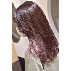 ピンクラベンダー ベリーピンク ラベンダーピンク ガーリー ヘアスタイルや髪型の写真・画像