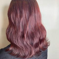 ピンクベージュ ラベンダーピンク ナチュラル ピンクバイオレット ヘアスタイルや髪型の写真・画像
