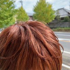 ピンクブラウン オレンジ ショート ピンク ヘアスタイルや髪型の写真・画像