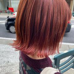 ラベンダーピンク レッドカラー チェリーレッド ボブ ヘアスタイルや髪型の写真・画像