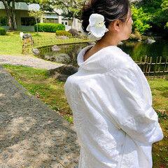 結婚式 セミロング 和装ヘア フェミニン ヘアスタイルや髪型の写真・画像