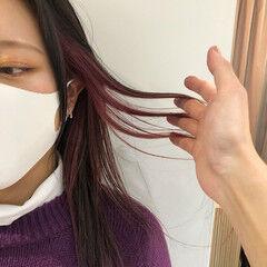 エレガント ラベンダーアッシュ ピンクラベンダー ラベンダーピンク ヘアスタイルや髪型の写真・画像