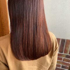 カシスレッド レッドカラー ガーリー セミロング ヘアスタイルや髪型の写真・画像