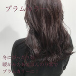 冬カラー セミロング 暗髪 ナチュラルブラウンカラー