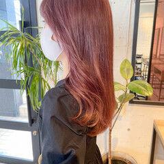 韓国ヘア ピンクカラー レイヤーカット 透明感カラー ヘアスタイルや髪型の写真・画像