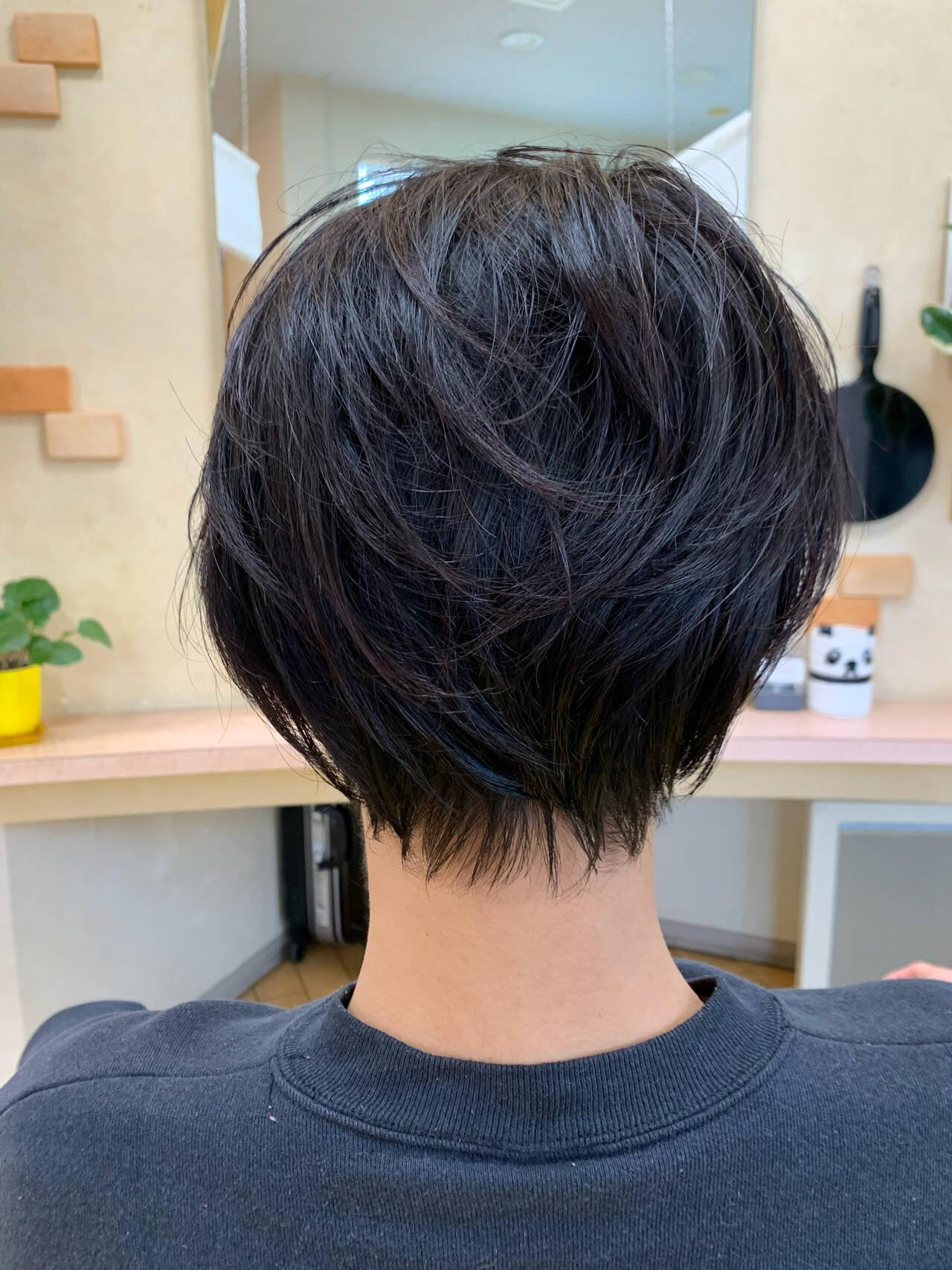 ショート ショートヘア ナチュラル 黒髪ショートヘアスタイルや髪型の写真・画像