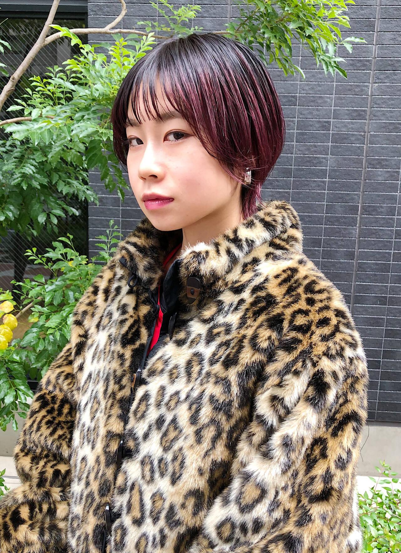 小顔ショート グラデーションカラー ハイトーンカラー モードヘアスタイルや髪型の写真・画像