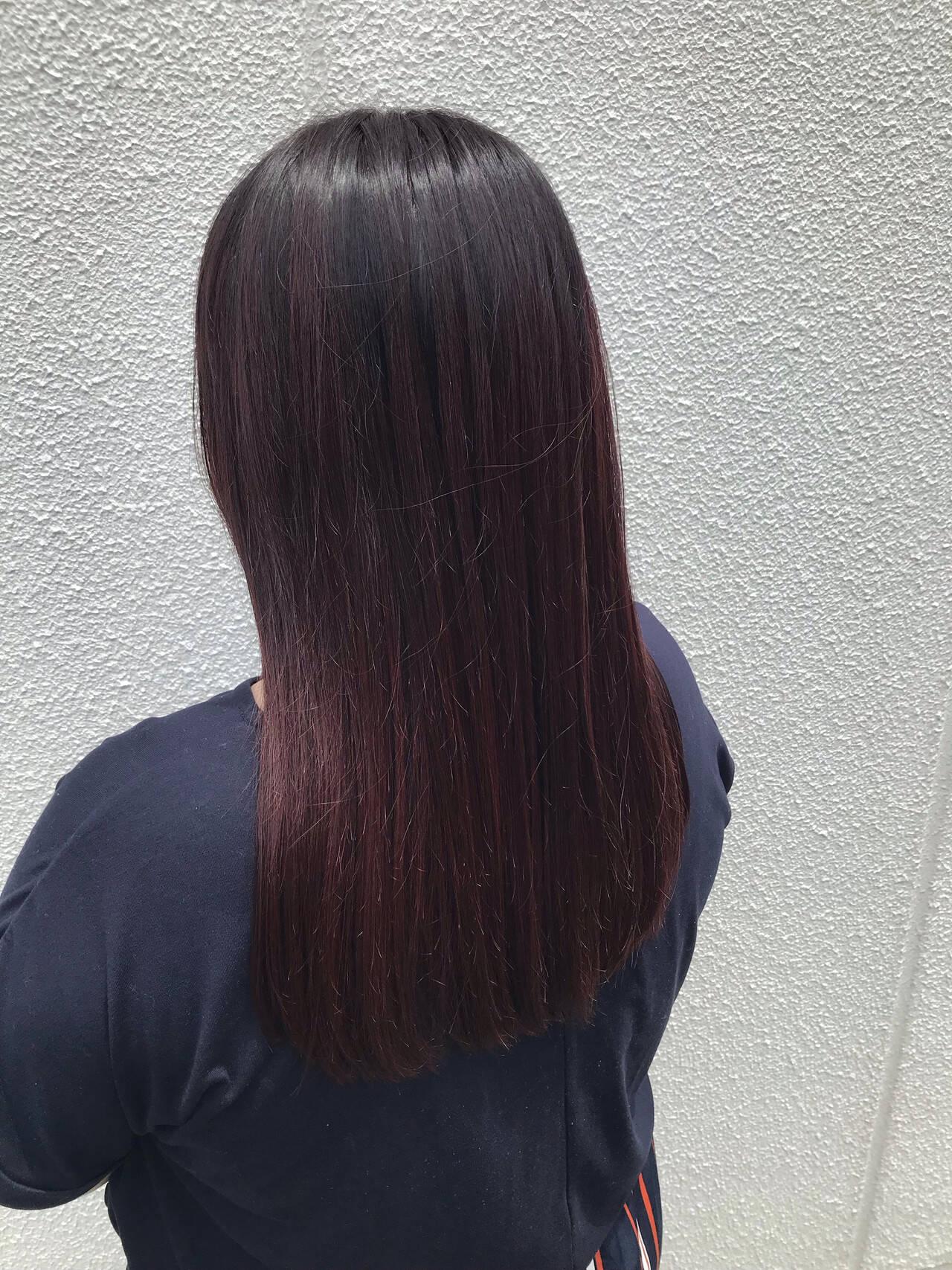 ボブ グラデーションカラー ナチュラル 暗色カラーヘアスタイルや髪型の写真・画像