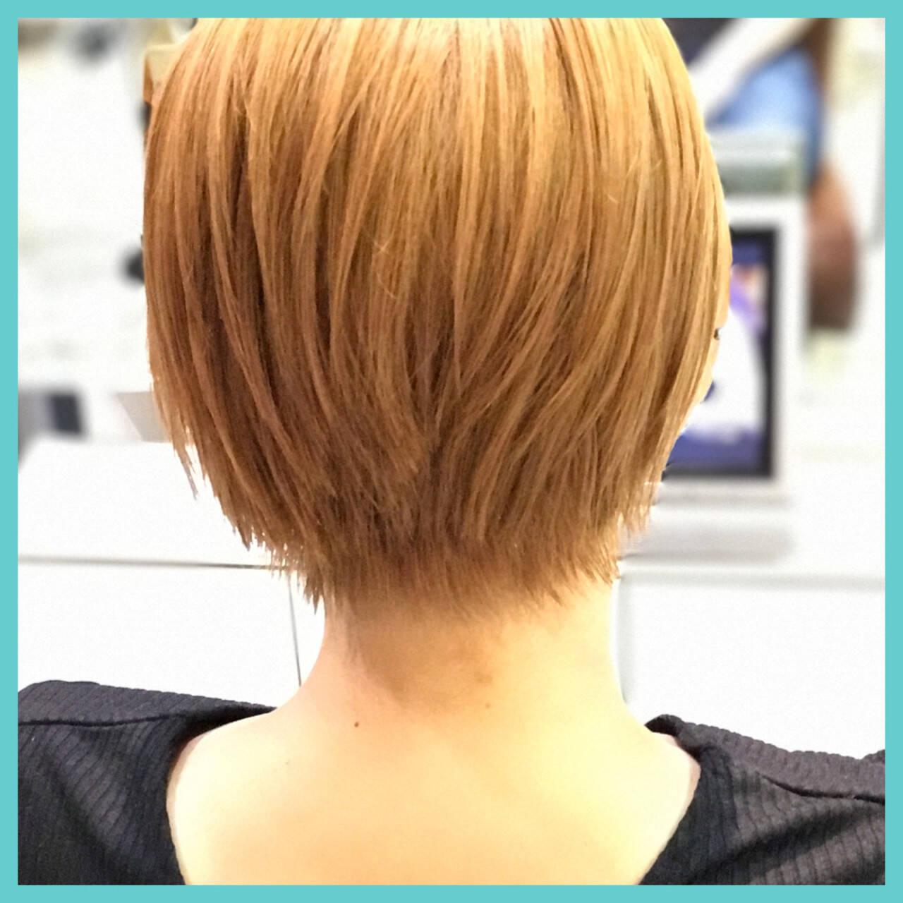 ショート 透明感 ダブルカラー 黒髪ヘアスタイルや髪型の写真・画像