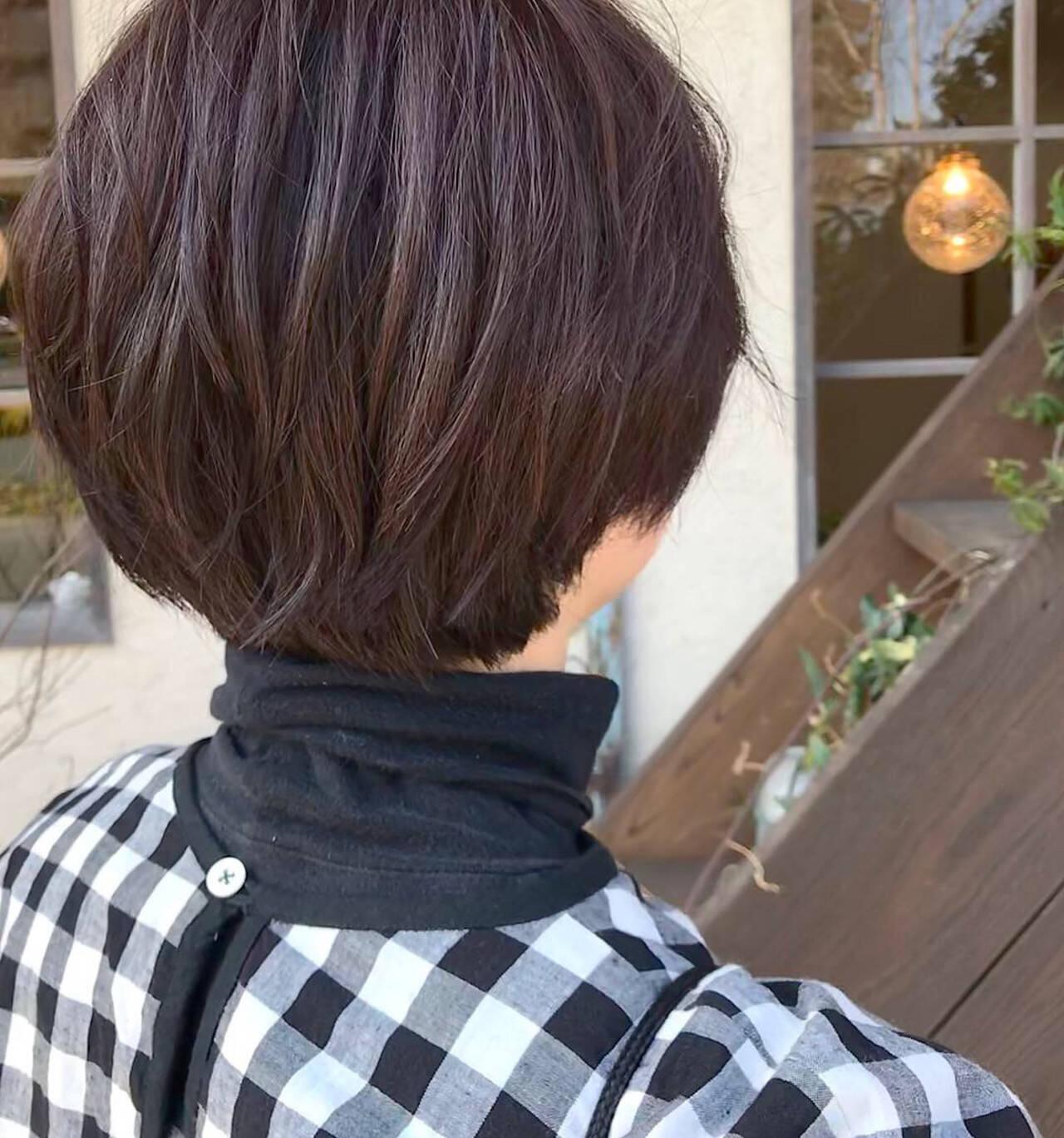 カシスレッド レッドブラウン マッシュショート ショートヘアスタイルや髪型の写真・画像